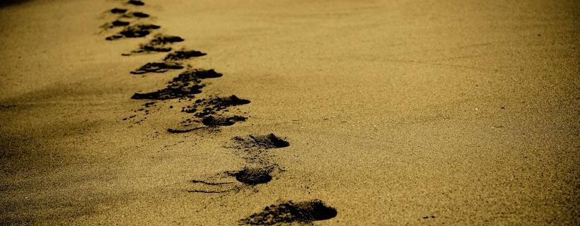 Increasing Technological Footprint